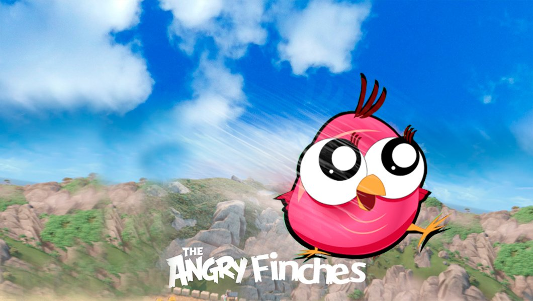 The ​Angry Finches